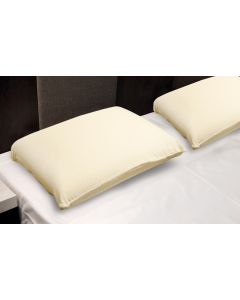 Healthy Back Bliss Pure Latex Pillow