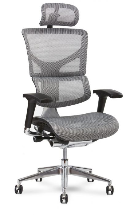 sc 1 st  Healthy Back & X² Executive Task Chair
