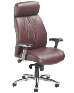 Healthy Back Monaco Chair